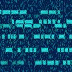 Morse Expert icon