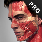 Action Anatomy Pro – Anatomy Pose App for Artist Mod Apk Unlimited Android